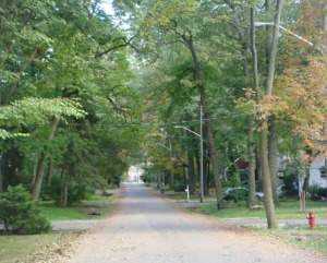 Streets without curbs and sidewalks are typical in the Mineola area.
