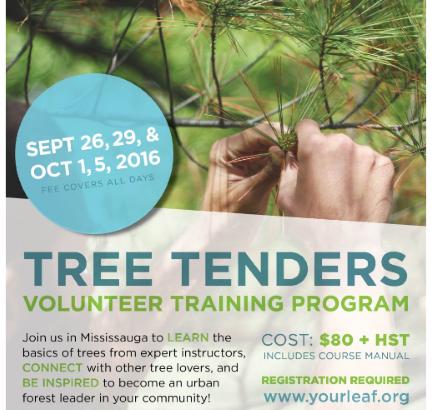 Tree Tenders 2016