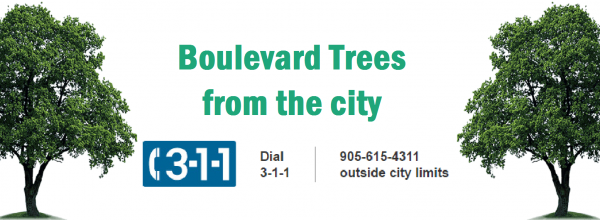 Order your Free Tree